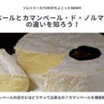 カマンベールチーズの白カビはどうやって出来る
