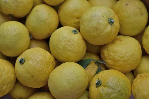 ゆず 柑橘系フルーツ