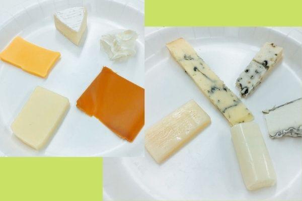 チーズプロフェッショナルの試験対策