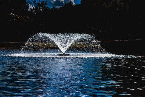 泉 フォンティーヌ